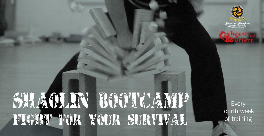 shaolin bootcamp