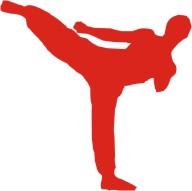 Sanda (Kick Boxing)