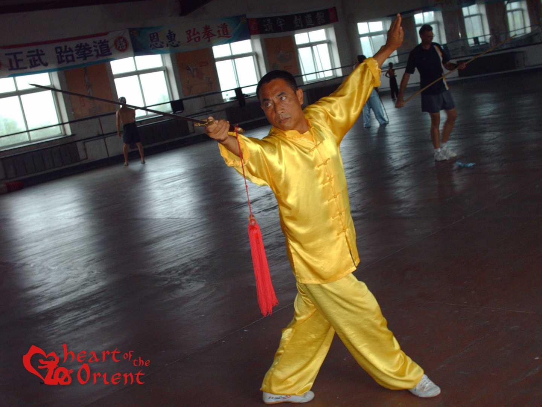 Master Lin Jin Rong