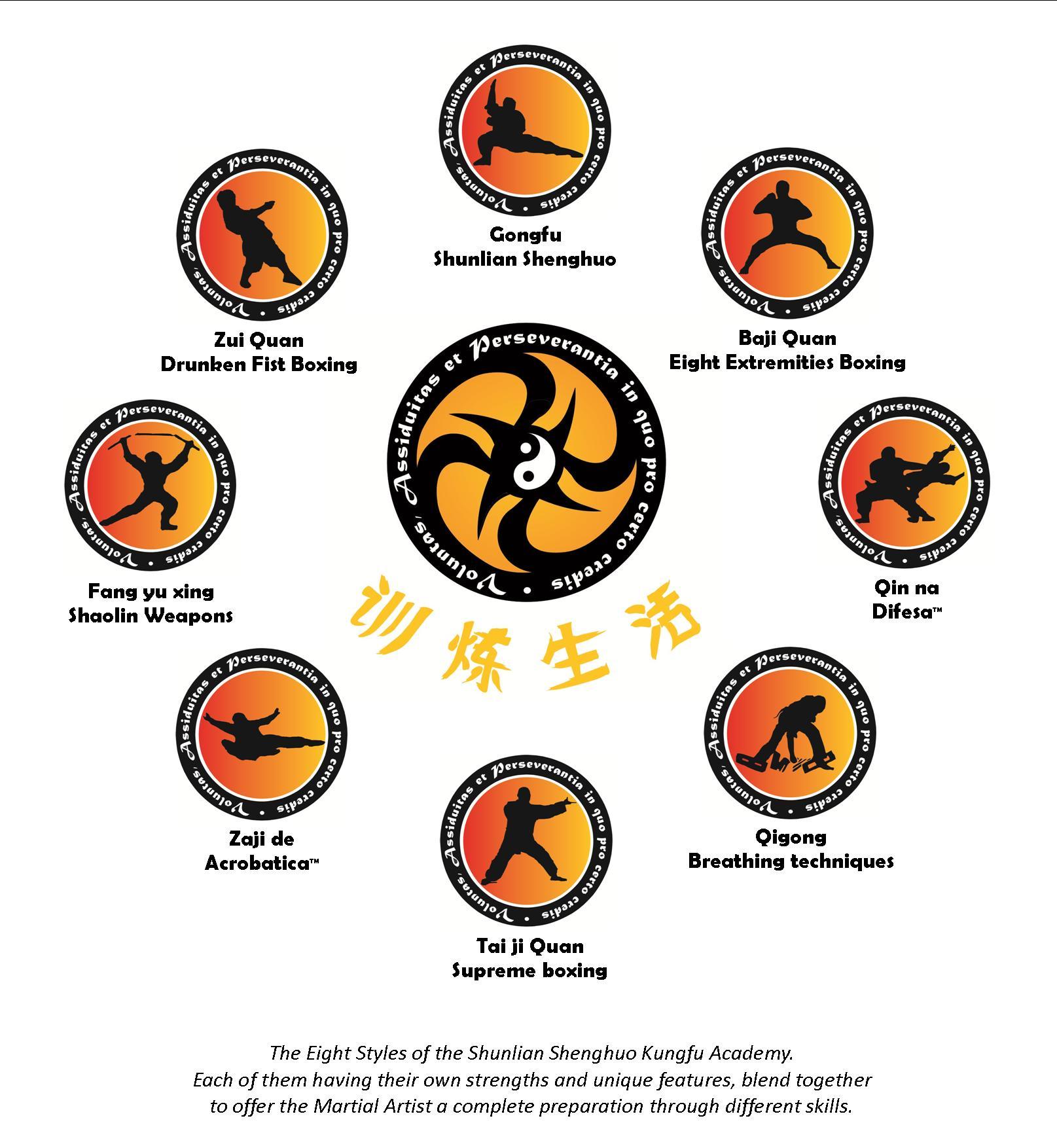 Shunlian Shenghuo Kungfu Academy grades