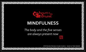 14 - MINDFULNESS