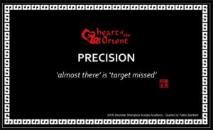 41 - PRECISION