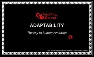 45 - ADAPTABILITY