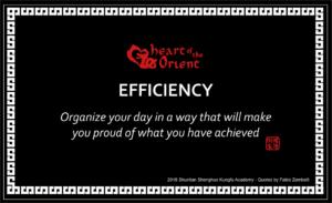 48 - EFFICIENCY