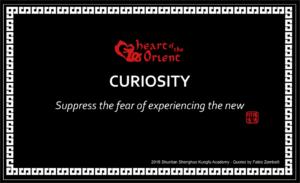 6 - CURIOSITY